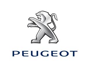 Peugeot-Özel-Servis